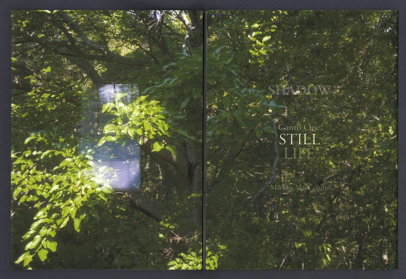 04ShadowStillLifeTitlePage