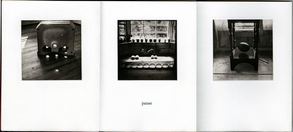 bookworks-domestic-02DomArc
