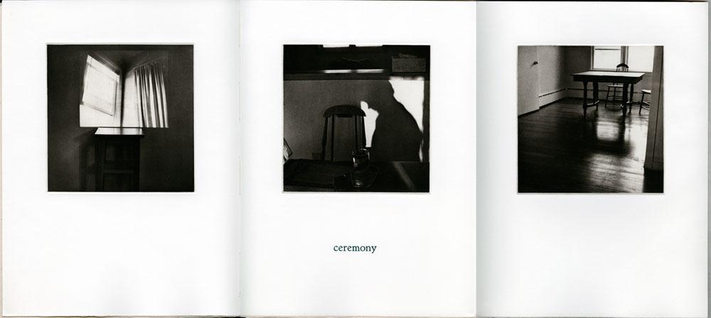 bookworks-domestic-03DomArc