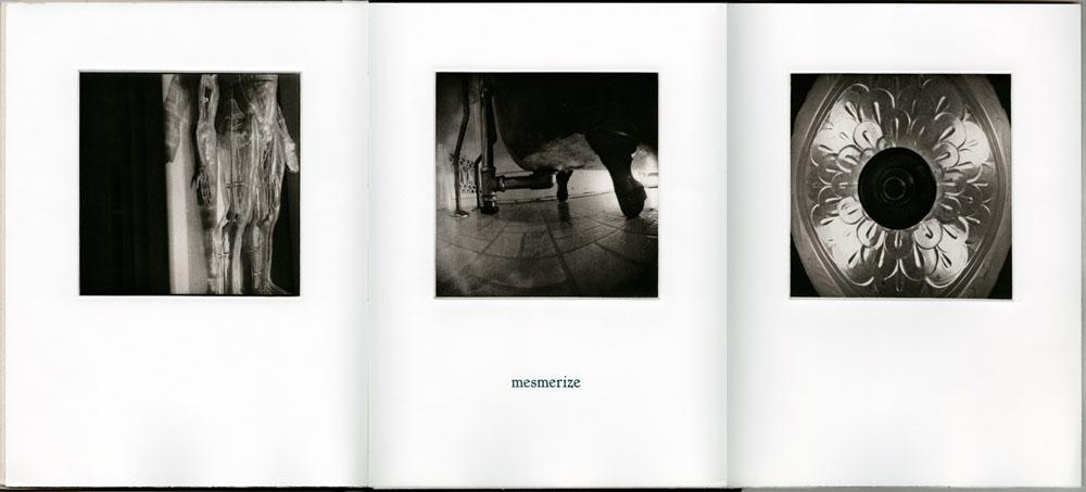 bookworks-domestic-04DomArc