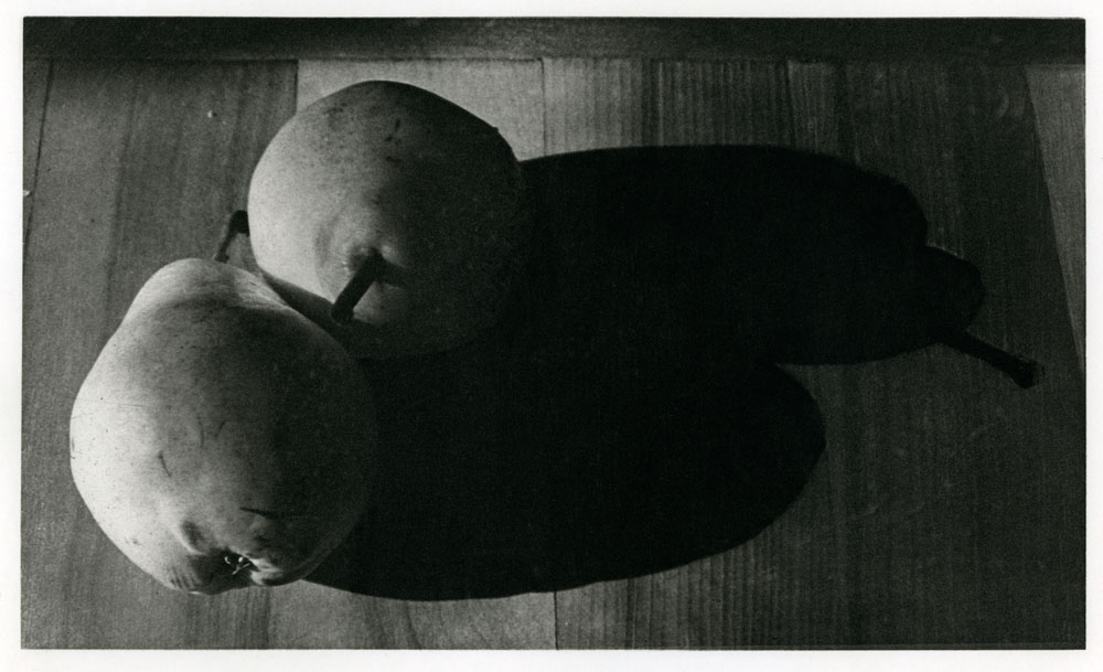 photogravure-early-05twin