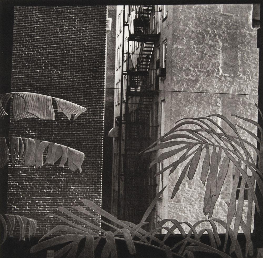 photogravure-strange-SC_Loft