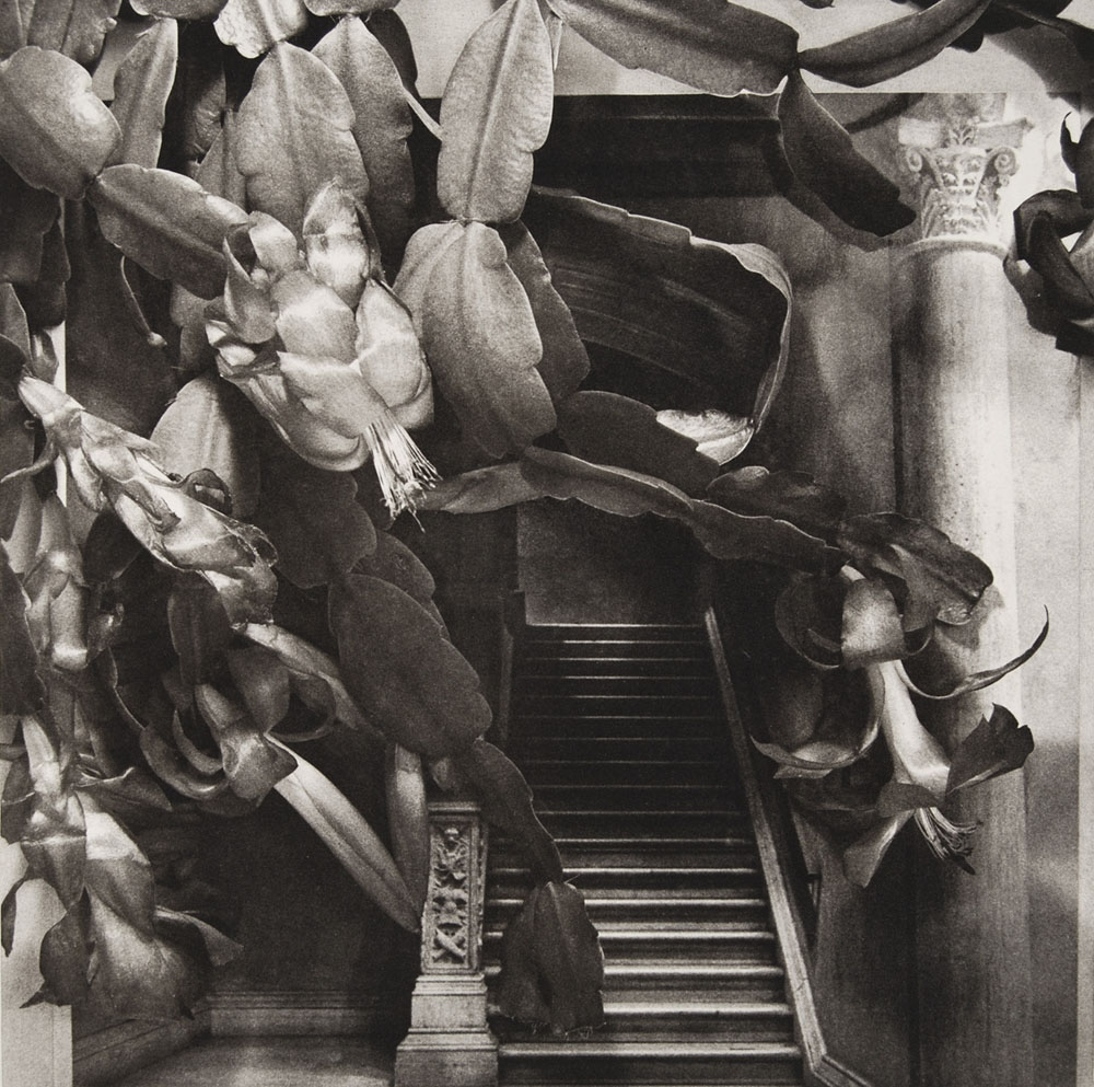 photogravure-strange-SC_Stairway
