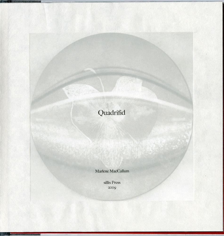 sillis-quadrifid-06quadrifid_titlepage