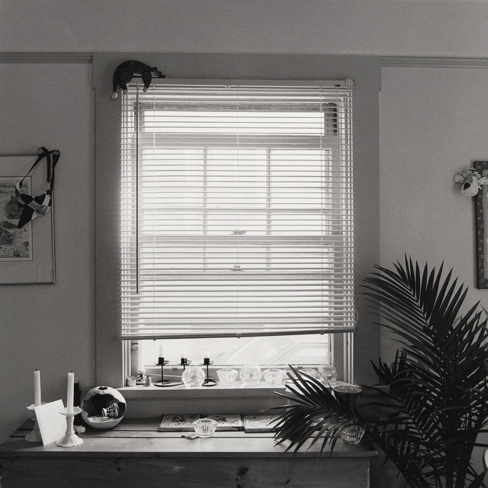 townsite-windows-TH_Window_03